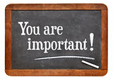 You are important on blackboard