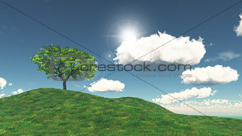 3D tree on a grassy hill