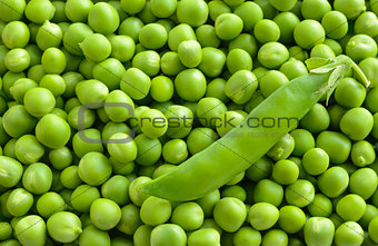 Background of Fresh Sweet Green Pea Ceeds
