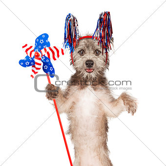 American Celebration Dog Holding Pinwheel