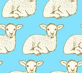 Sketch cute lamb in vintage style