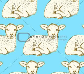 Sketch cute lamb in vintage style