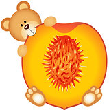 Teddy bear eating a peach slice