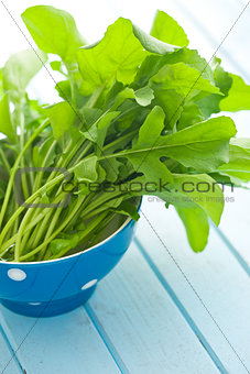fresh arugula leaves in bowl