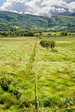 fence leading to green rocky mountains