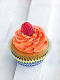 Delicious cream and raspberry cupcake
