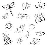Set of bugs