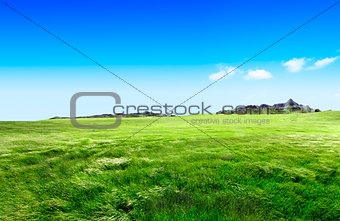 Green grass and hill