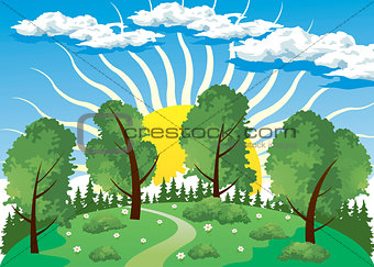 Forest landscape with sun