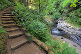 Wood Steps by  Waterfall at Sweet Creek Falls Trail