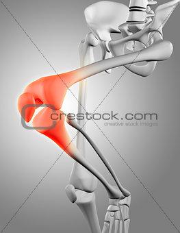 3D render of skeleton close up of knee