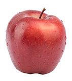 Fresh apple on white