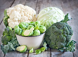 Assortment of cabbages