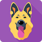 dog German shepherd icon flat design
