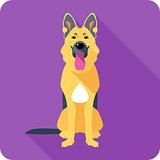 dog German shepherd sitting icon flat design