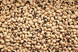 Dried black eyed peas background