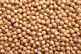 Dried chick peas background