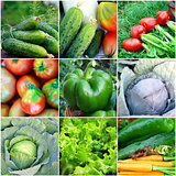 Healthy food background - collection with color vegetables