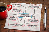 project management flow chart or mindmap