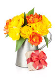 Colorful tulips in watering can and gift box