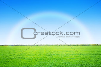 Green grass field and blue sky with rainbow