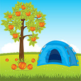 Blue tent under tree