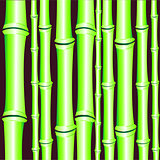 Background from bamboo
