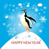 penguin winter