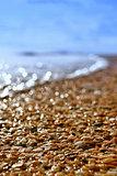 Sunny sea shore