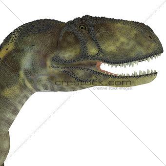 Abelisaurus Dinosaur Head