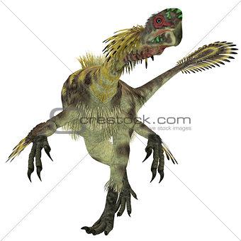 Citipati Male Dinosaur