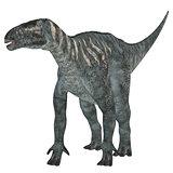 Iguanodon Herbivore Dinosaur