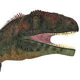 Mapusaurus Dinosaur Head