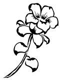 Black outline of single flower