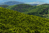 Hilly landscape. Tuscany, Italy