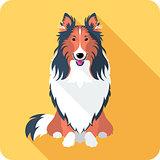 dog Rough collie icon flat design