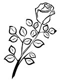 Black outline of single rose flower