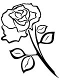 Rose flower black outline