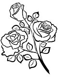 Black outline of rose flowers