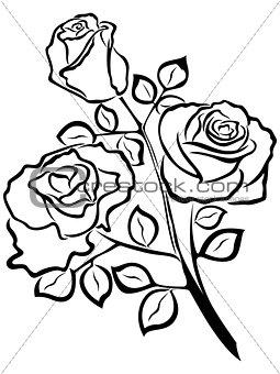 Black outline of rose flowers