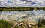 Florida Everglades Lake
