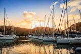 Marina in Tortola