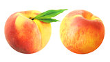 Two delicious fresh peach