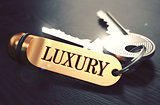Luxury written on Golden Keyring.