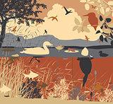 Freshwater pondlife