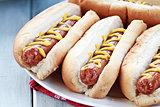 Hotdogs with Mustard
