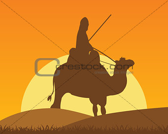 Camel with horseman
