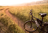 black country bicycle at sunrise or sunset