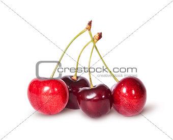 Four red juicy sweet cherries