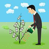 businessman watering dollar plant